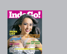 Indogo! Magazine November 2014